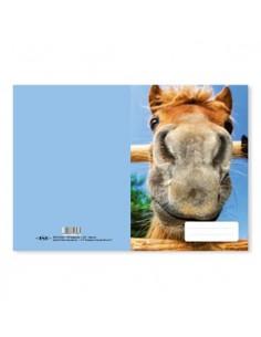 Füzetborító pd A/5 bámu-ló
